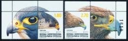 """BOSNIA/Bosnien Serbische Rep.SRPSKA EUROPA 2019 """"National Birds"""" Set Of 2v**Label - 2019"""