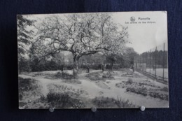 G-129 /  Marneffe, Les Jardins De  1ère Division   / Circulé  1920 - Burdinne