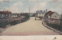 BEEDING , Sussex , England , UK , 1905 ; Street View - England