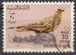 LIBIA - 1965 - Yvert 259 Usato. - Libia