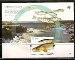 Portugal ** & Peixes Migradores, Salmão Europeu 2011 - Blocks & Sheetlets