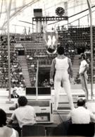 OLYMPIC GAMES MÜNCHEN JEUX OLYMPIQUES MUNICH 1972 STADE OMNISPORTS GYMNASTIC GYMNASTIQUE - Sports