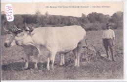 SAINT-SAUVEUR-EN-PUYSAYE- UN BON ATTELAGE- TB ETAT- 1934 - Saint Sauveur En Puisaye