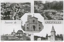 GREZOLLES , Près St Germain-Laval - Multivues-1965 - Bon état - Frankrijk