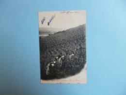 LES VENDANGES  -  Sur Le Coteau  -  1905   - - Métiers