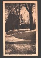 Hamoir - L'Hiver - Promenade Des Maronniers - Hamoir