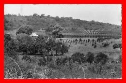 2 CPSM/pf  LABE (Guinée Française)   Plantation De La C.A.P.P / Vue Générale Du Quartier Du Commerce....C101 - Guinée Française