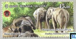Sri Lanka Stamps 2019, Wasgamuwa National Park, Elephants, Elephant, MNH - Sri Lanka (Ceylan) (1948-...)