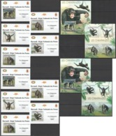 XX246 !!! IMPERFORATE, PERFORATE 2012 BURUNDI ANIMALS PRIMATES CHIMPANZES !!! 2KB+2BL+10 LUX BL MNH - Chimpanzés