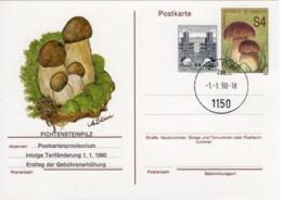 FDC PK - Fichtensteinpilz Postkartenprovisorium 1990 Ersttag - FDC