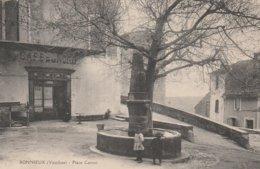CPA 84  BONNIEUX PLACE CARNOT ANIMEE CAFE DU NORD - Bonnieux