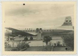 (Aviation) Avion De La TEAL . Tasman Empire Airways Limited (précurseur D'Air New Zealand). - Aviazione