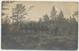 76-503 Estonia Military - Estland