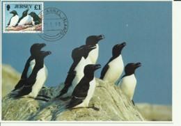 Carte Maximum - Oiseaux - Jersey - Razorbill - Petit Pingouin - Alca Torda - Jersey