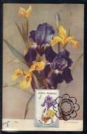 ( Le ) Romania, Maximum Card, Plants, Flowers, Irises, Post Stamp FD, Old Postcard, Unique - Roses