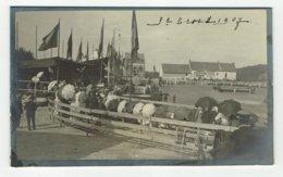 Sint Truiden FOTO Op Karton  1907 - Sint-Truiden