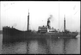"""Photo Récente Bateau """" Tours"""" Delmas 1920 Alloa 20.29 SMAT 1951 """"Lacydon """" 54 Tunisien 66 Détruit - Riproduzioni"""