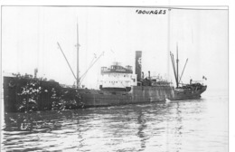 "Photo Récente Bateau "" Bourges "" Delmas 1919 Alloa 1942 ""Faligno "" 1947 Marseille - Riproduzioni"