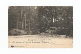 Brasschaet-Polygone.  -  Paysage Dans La Propriété Du Mick (1905). - Brasschaat