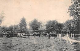 LE PETIT CLOS - FRESNE-LE-PLAN Par BOOS - Ferme, Vaches Au Pré.   (Seine Maritime) - Autres Communes