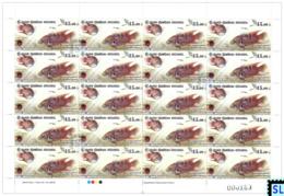 Sri Lanka Stamps 2019, Wasgamuwa National Park, Fish, Sheetlet - Sri Lanka (Ceylan) (1948-...)