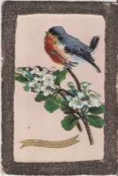 VIVE SAINTE CATHERINE OISEAUX PAILLETTE COLLAGE - Vögel