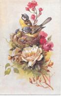 Flowers, Blumen, Des Fleurs, Roses, Roses, Bird, Vogel, Oiseaux, Blaumeise, Blue Tit, Mésange Bleue - Fleurs