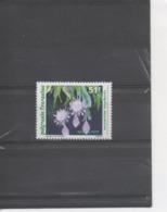 POLYNESIE Française - Flore - Fleur - Belle De Nuit (Epiphylium Oxipetalum) - Polynésie Française