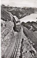 Brienzsee Rothorn - Le Train à Crémaillère - BE Berne