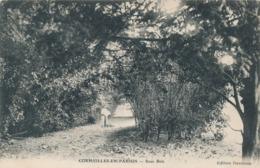 CPA - France - (95) Val D'Oise - Cormeilles-en-Parisis - Sous Bois - Cormeilles En Parisis