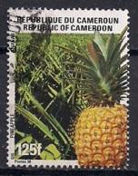 YT N° 887 - Oblitéré -Tourisme - Cameroun (1960-...)