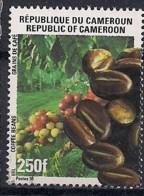 YT N° 891 - Oblitéré -Tourisme - Cameroun (1960-...)