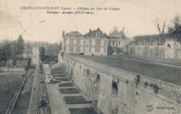 CPA - France - (45) Loiret - Chatillon-Coligny - Château Des Sires De Coligny - Chatillon Coligny