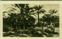 AFRICA - LIBIA / LIBYA  - GIARABUB - POZZO NELL'OASI  - EDIT ISTITUTO COLONIALE FASCISTA - 1930s (BG4508/2) - Libya