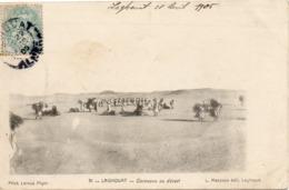 ALGERIE - 31 - LAGHOUAT - Caravane Du Désert - L. Mazzuca édit. Laghouat - Phot. LEROUX ALGER - - Algiers