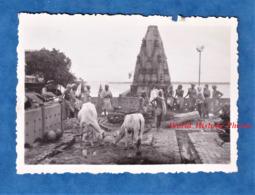 2 Photos Anciennes Snapshot - Ville à Situer - INDIA ? SRI LANKA ?- Bord Du Gange? Asia Asie Inde ? Vache Homme Torse Nu - Bateaux