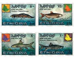 Ref. 53281 * MNH * - ETHIOPIA. 1985. FRESH WATER FISHES OF ETHIOPIA . PECES DE AGUA DULCE DE ETIOPIA - Ethiopie