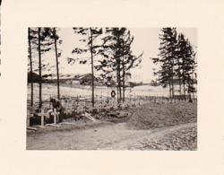 Foto Deutscher Soldatenfriedhof - Gräber - 2. WK - 5,5*4cm (44024) - Krieg, Militär