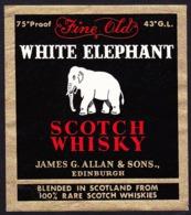 Whisky Label, Scotland - WHITE ELEPHANT / James G. Allan & Sons - Edinburgh - Whisky