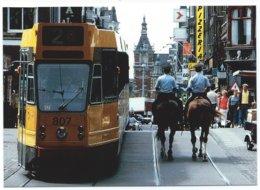 Amsterdam Leidsestraat Tram Tramway Strassenbahn Trolley Streetcar Politie Paard Police Horse - Amsterdam