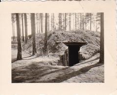 Foto Unterstand Im Wald -  2. WK - 5,5*4cm (44035) - Krieg, Militär