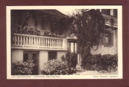 Neuchâtel - CRESSIER - Les Pervenches - NE Neuchâtel