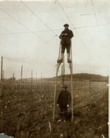 HOP PICKING KENT  KENTISH HOPFIELD  SEE CORNER  Hopfenanbaugebietes    21*16CM Fonds Victor FORBIN 1864-1947 - Fotos