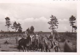 Foto Deutsche Soldaten Zu Pferd Mit Gruppe Kriegsgefangenen - POW - 2. WK - 8*5cm (44057) - Krieg, Militär