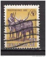 Uganda, Ouganda, Boeuf, Bull, Cattle, Taureau, Taurus - Farm