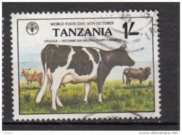 Tanzanie, Tanzania, Vache, Cow, Fao - Koeien