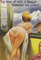 Mont,Paysage D'hiver  Cate Postale Moderne - Humor