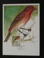 Carte Maximum Card Oiseau Passereau Bird 1994 République Tchèque Czech Republic Ceska (ref 86298) - FDC