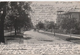 NEW ORLEANS  ST CHARLES AVENUE  EN 1904 - New Orleans