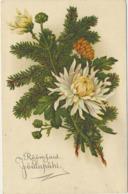76-805 Estonia  WO 729 Christmas Flowers - Estland